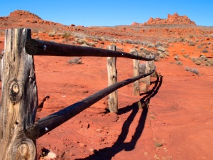 HIKING THE RED CLIFFS DESERT RESERVE