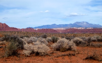 The variety of mts, colors and plants are amazing in SW Utah.