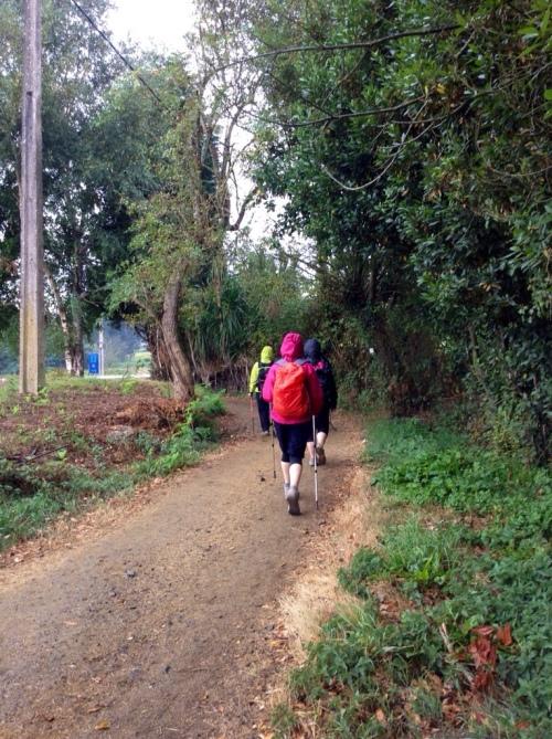 Camino Frances Part  9 - A Moment