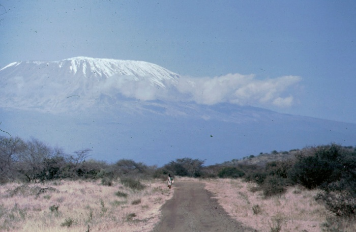 Kilimanjaro viewed from Kenya - H. Webster