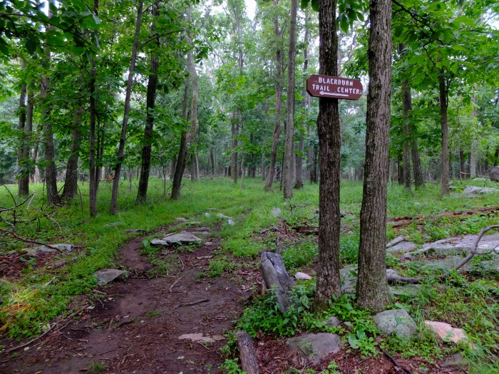 To Blackburn Trail Center