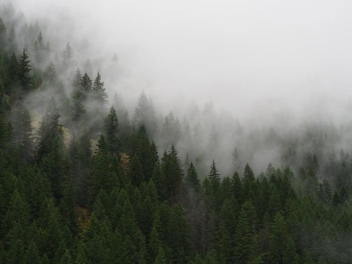 North Cascades Highway, WA