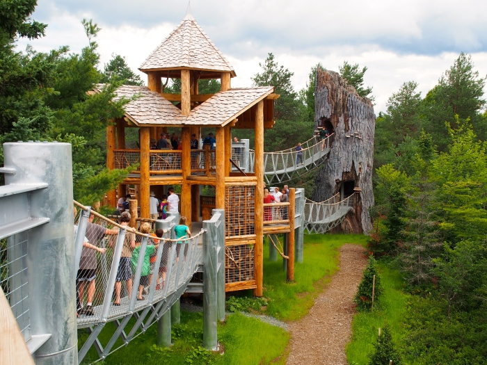 The Wild Center, Tupper Lake, NY