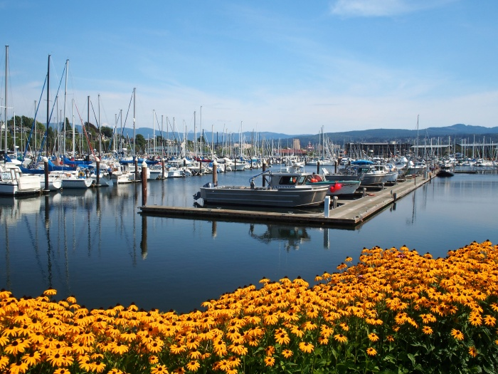 Squalicom Harbor, Bellingham Washington