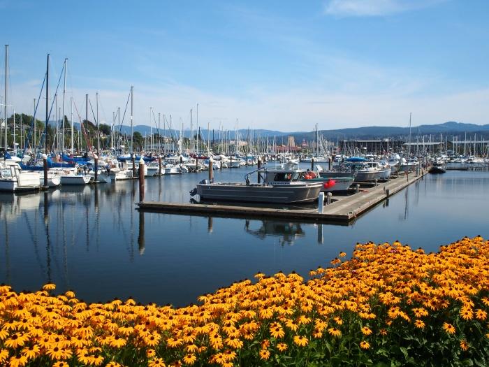 Squalicom Harbor, Bellingham Washington